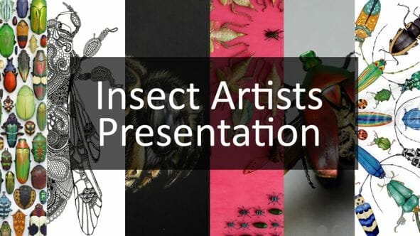 Insect Artist Presenation