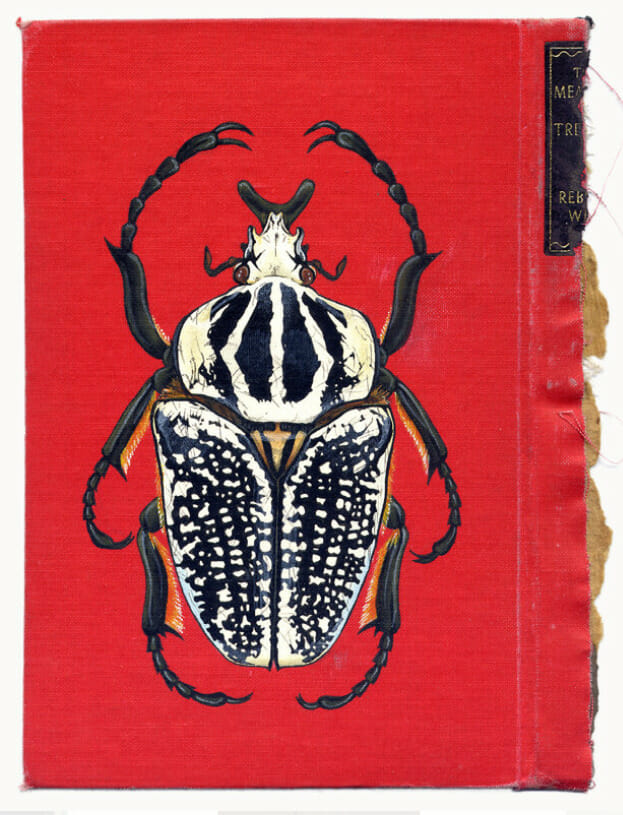 Beetle Insect Art on a Book by Rose Sanderson