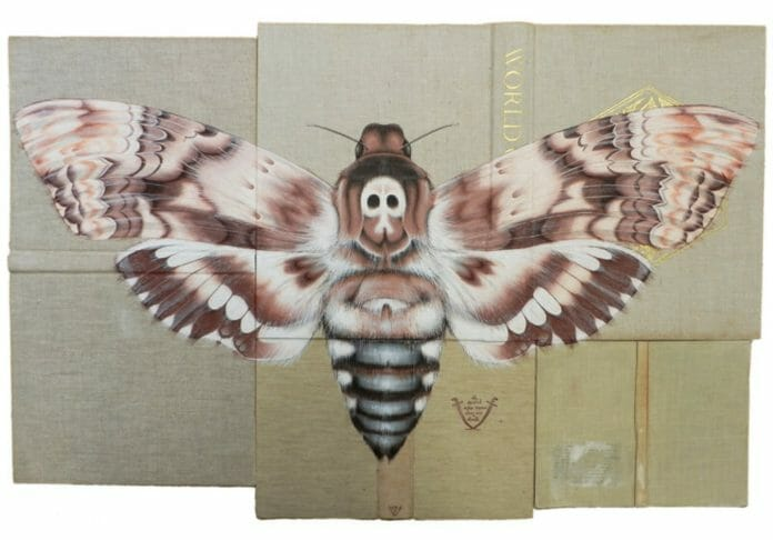 Insect Art by Rose Sanderson