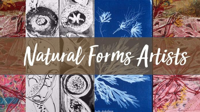 Natural Forms Artists Cover