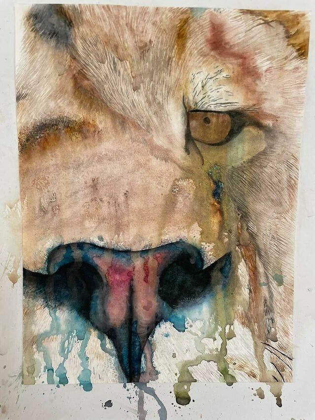 Lion Painting Inspiration.