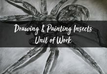 Drawing and Painting Insects