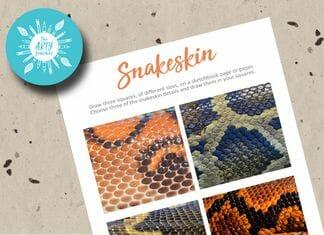 Drawing Snakeskin
