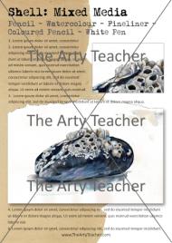 amazing shell drawing