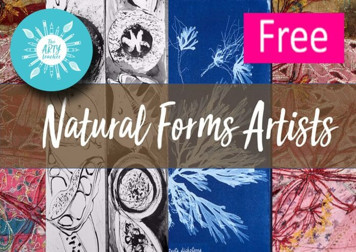 Natural Forms Artists