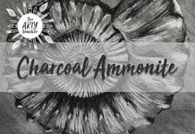 Charcoal Ammonite