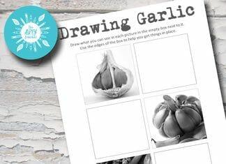 Drawing Garlic