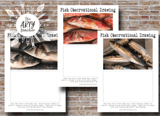 Observational Drawing of Fish